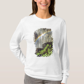 T-shirt Les Etats-Unis, la Californie, parc national de