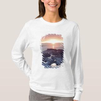 T-shirt Les Etats-Unis, la Californie, San Diego. Marée de