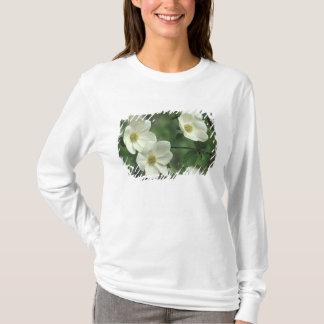 T-shirt Les Etats-Unis, la Californie, Yosemite NP, le