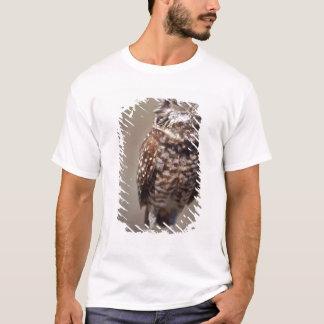 T-shirt Les Etats-Unis, la Floride, creusant le hibou