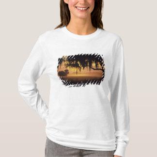 T-shirt Les Etats-Unis, la Floride, lac Kissimmee.