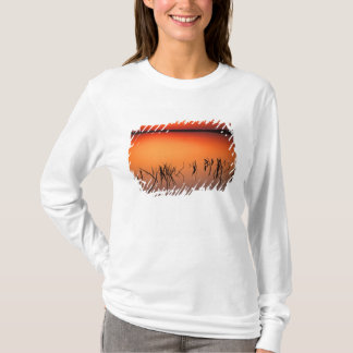 T-shirt Les Etats-Unis, la Floride. Silhouettes des