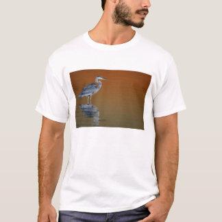 T-shirt Les Etats-Unis, la Floride, St Petersburg, Fort De