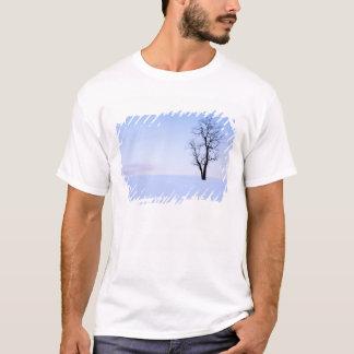 T-shirt Les Etats-Unis, la Virginie, le comté de Page,