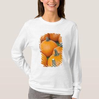 T-shirt Les Etats-Unis, la Virginie Occidentale,