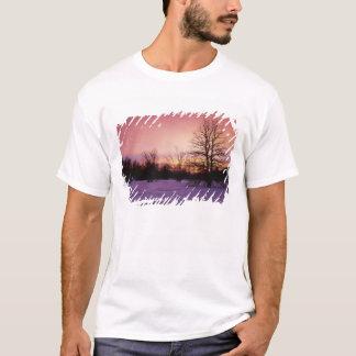 T-shirt Les Etats-Unis, la Virginie, parc national de
