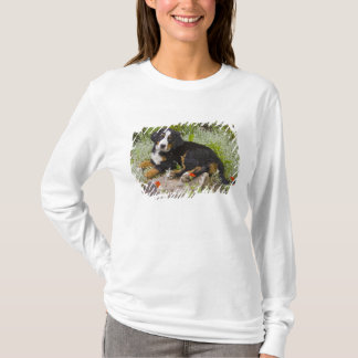 T-shirt Les Etats-Unis, le Colorado, Breckenridge. Bernese