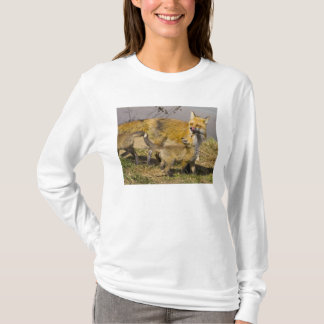 T-shirt Les Etats-Unis, le Colorado, Breckenridge. Mère de