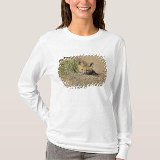 T-shirt Les Etats-Unis, le Colorado, Breckenridge. Renard