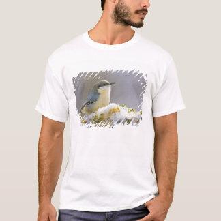 T-shirt Les Etats-Unis, le Colorado, Frisco. Plan