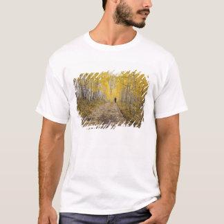 T-shirt Les Etats-Unis, le Colorado, réserve forestière de