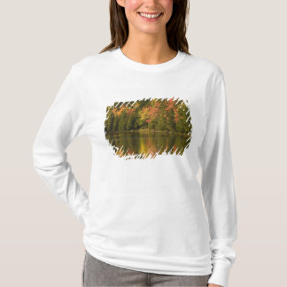 T-shirt LES Etats-Unis ; Le Maine ; Acadia NP. Réflexions