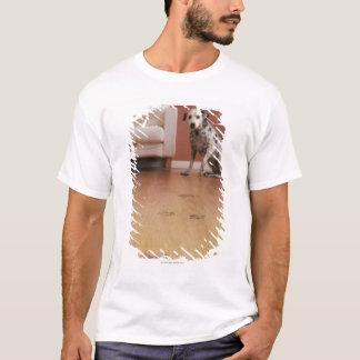 T-shirt Les Etats-Unis, l'Illinois, Metamora, plan