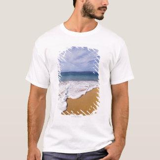 T-shirt Les Etats-Unis, Maui, Wailea, surf et rivage