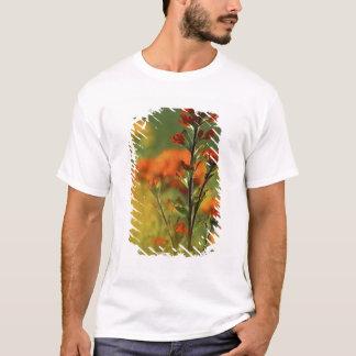 T-shirt Les Etats-Unis, Michigan, île de Drummond, plaines