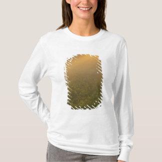 T-shirt Les Etats-Unis, Michigan, pré des plantes dorés