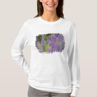 T-shirt Les Etats-Unis, Minnesota du nord-est, près de la