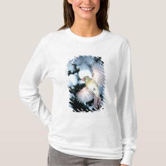 T-shirt Les Etats-Unis, Minnesota, tailles de Mendota,