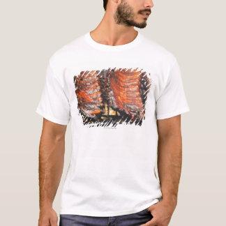 T-shirt Les Etats-Unis, New York, New York City, travers