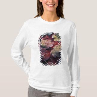 T-shirt Les Etats-Unis, nord-ouest Pacifique. Feuille
