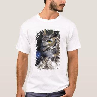 T-shirt Les Etats-Unis, Nouveau Mexique, parc naturel