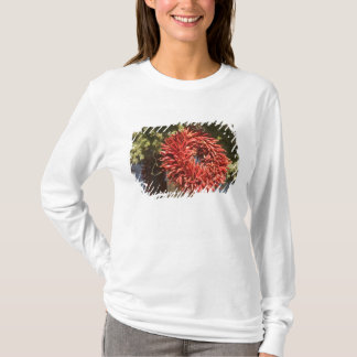 T-shirt Les Etats-Unis, Nouveau Mexique, Santa Fe : Santa