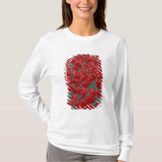 T-shirt Les Etats-Unis, Ohio, Cincinnati. Lit des tulipes