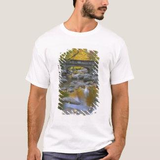 T-shirt Les Etats-Unis, Orégon, Ashland, parc lithiné.