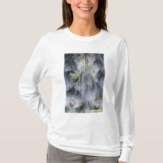T-shirt Les Etats-Unis, Orégon, courbure. La glace sur le