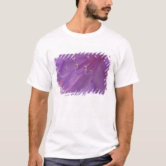 T-shirt Les Etats-Unis, Orégon, Portland. Plan rapproché
