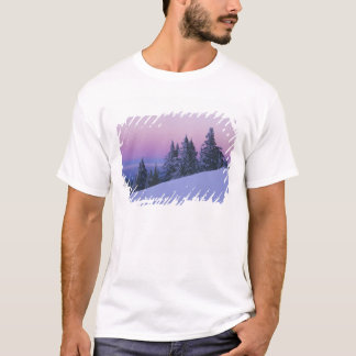 T-shirt Les Etats-Unis, Orégon, réserve forestière de