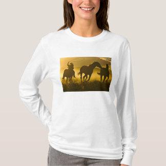 T-shirt Les Etats-Unis, Orégon, Sénèque, ranch de