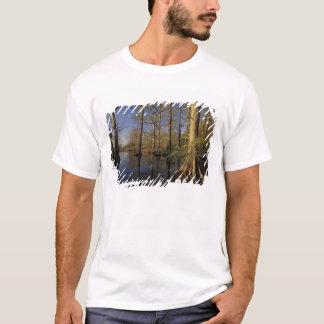 T-shirt Les Etats-Unis, Tennessee. Faune de ressortissant