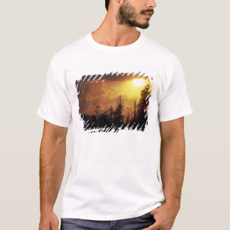 T-shirt Les Etats-Unis, Tennessee, Great Smoky Mountains