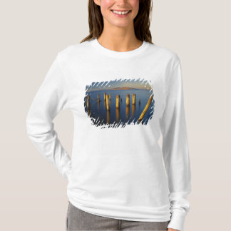 T-shirt Les Etats-Unis, Utah, grand bassin, Saltair, grand
