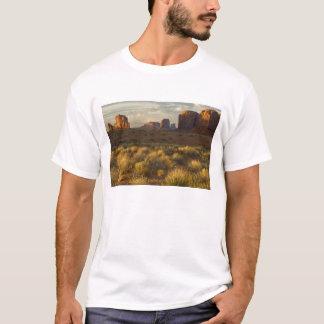 T-shirt Les Etats-Unis, Utah, parc national de vallée de