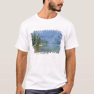 T-shirt Les Etats-Unis, Utah, réserve forestière d'Ashley,