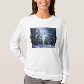 T-shirt Les Etats-Unis, Utah, Salt Lake City, parc de