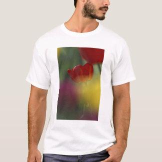 T-shirt Les Etats-Unis, Utah, tulipes de vallée de