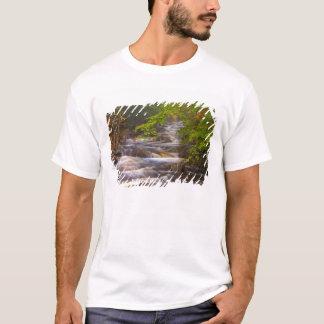 T-shirt Les Etats-Unis, Vermont, Arlington est, coulant