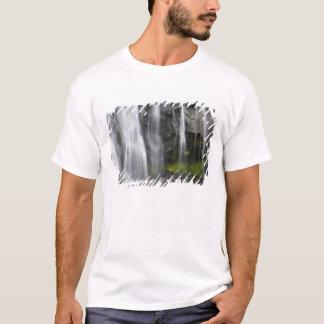 T-shirt Les Etats-Unis, WA, le mont Rainier NP, automnes