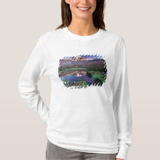 T-shirt Les Etats-Unis, Washington, le mont Rainier NP,