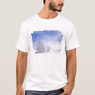T-shirt Les Etats-Unis, Washington, région de Palouse,