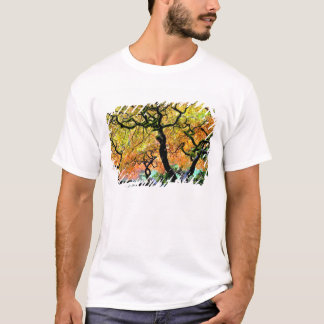 T-shirt Les Etats-Unis, Washington, Seattle, jardin de