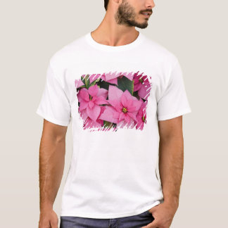 T-shirt Les Etats-Unis, Washington, Woodinville, la crèche