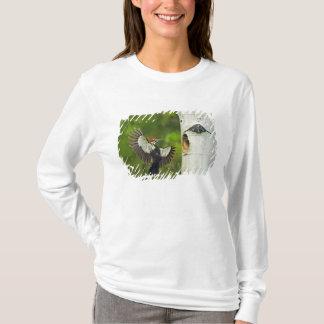 T-shirt Les Etats-Unis, Washington, Yakima. Mâle plissé
