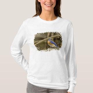 T-shirt Les Etats-Unis, Washington, Yakima. Oiseau bleu
