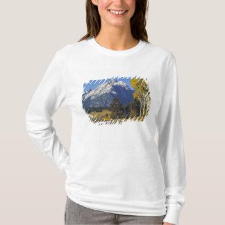 T-shirt Les Etats-Unis, Wyoming, Teton grand NP. Route