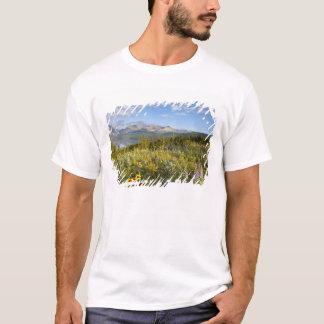 T-shirt Les fleurs sauvages de prairie et abaissent le lac