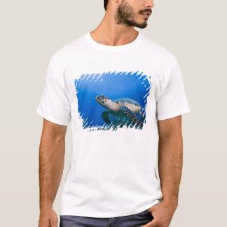 T-shirt Les Îles Caïman, petite Île Caïman, 2 sous-marins
